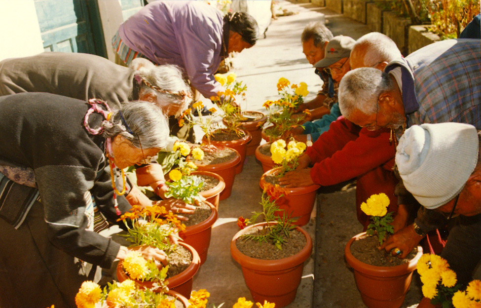 Tibetan-Homes-Foundation-Anziani
