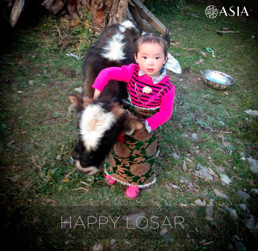 happylosar_logo